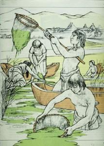 Aztèques récoltant la spiruline